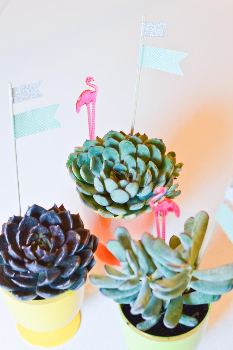 let's fête goblet succulents_1